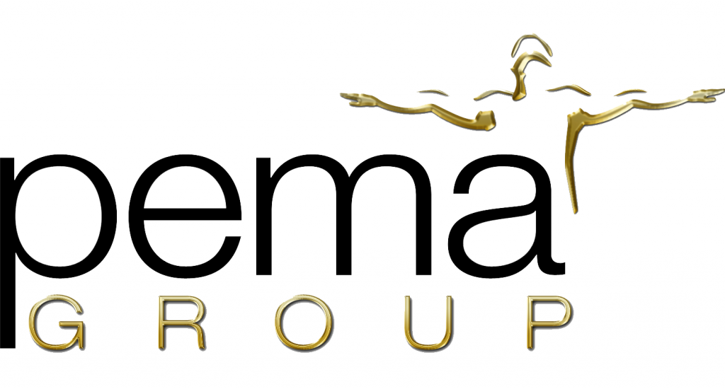 Pema Group, first research group to study medical thermography
